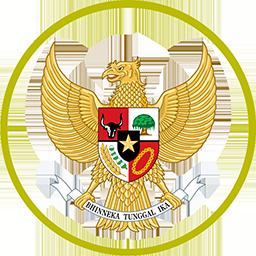 44872 Indonesia Kits 8211 Indonesia National Team 8211 18 20