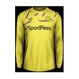 Everton Minikit GK Kits 8211 Everton 8211 19 20 RX3 GK Kits Added