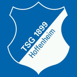 TSG 1899 Hoffenheim Logo Kits 8211 1899 Hoffenheim 8211 19 20